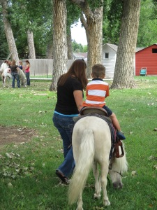 Qunice, pony and carriage rides at Plum farm 016