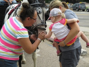 Qunice, pony and carriage rides at Plum farm 032
