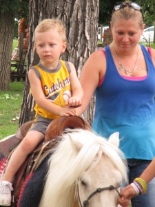 Qunice, pony and carriage rides at Plum farm 037