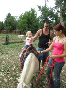 Qunice, pony and carriage rides at Plum farm 038