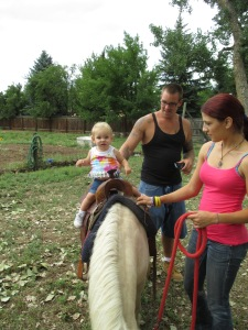 Qunice, pony and carriage rides at Plum farm 039