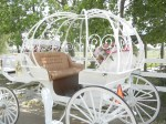 New Cinderella Carriage