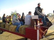 Centennial Village Hay rides and Lea benefit 001